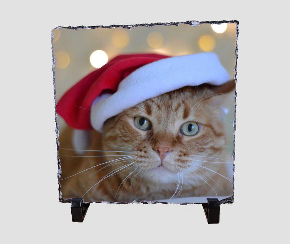 Mikulás sapkás cicát ábrázoló 20x20 cm-es karácsonyi kőlap