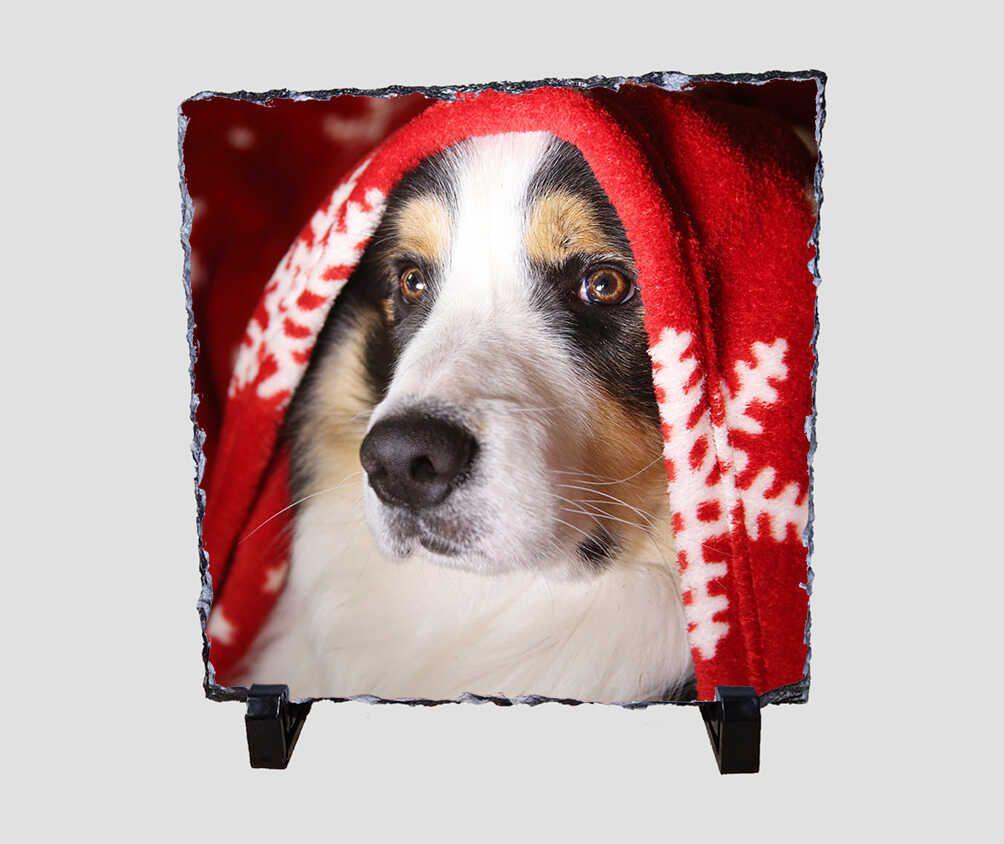 Hópelyhes pléd alá bújt kutyát ábrázoló 20x20 cm-es karácsonyi kőlap