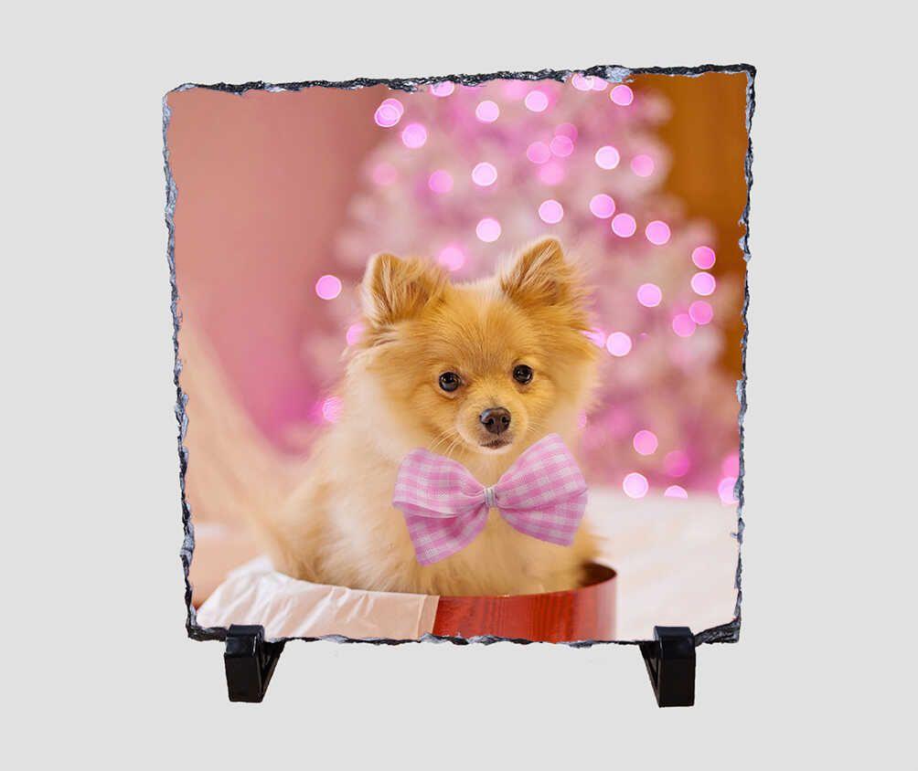 Rózsaszínben pompázó, cuki kiskutyás 20x20 cm-es karácsonyi kőlap